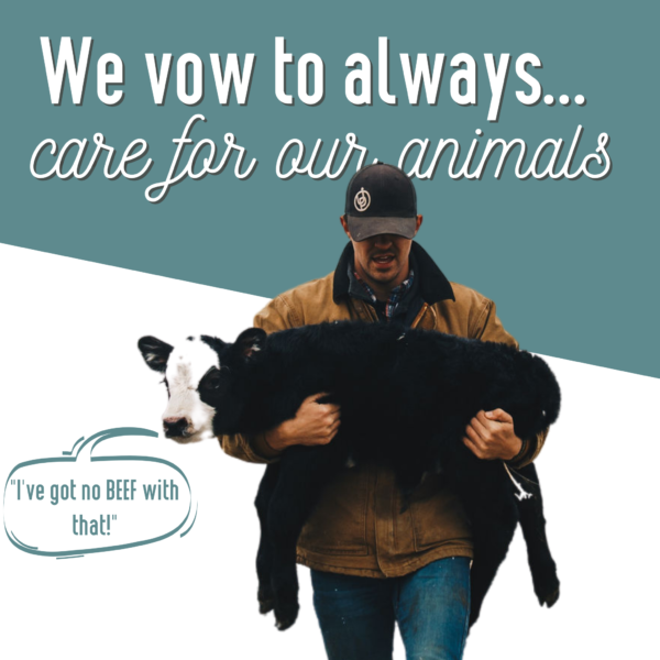 This photo is a vow to always care for animals